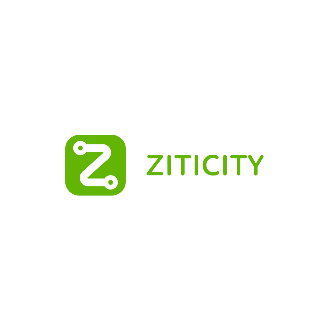 The last mile delivery service- ZITICITY